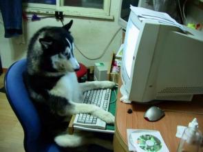Husky Brand Computer