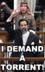 I Demand A Torrent!