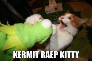 Kermit Raep Kitty