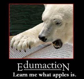 Polar Bear Education