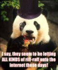 Pretentious Panda