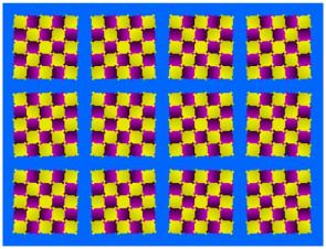 Blue Red and Yellow Visual Trick