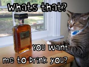 What's that? You want me to drink you?