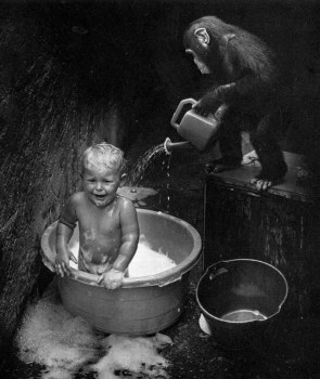Monkey Baby Bubble Bath