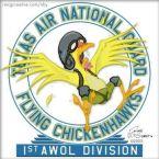 Texas Air National Guard Flying Chickenhawks