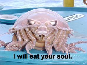 Devil Crab – I will eat your soul
