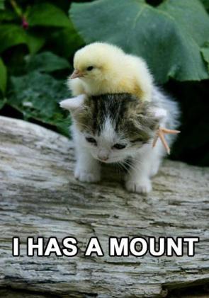 I has a mount