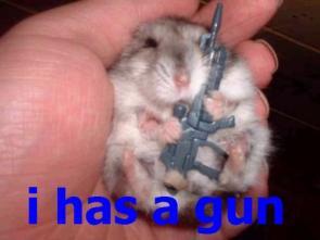 I has a gun