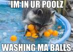 I'm in ur poolz, washing ma balls