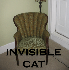 Invisible cat!
