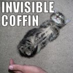 Invisible Coffin