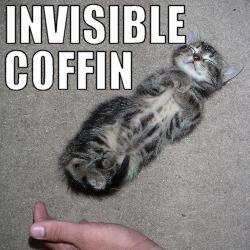 Invisible Coffin