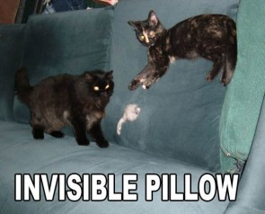 Invisible Pillow