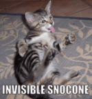 Invisible Snocone
