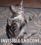 Invisible Snocone