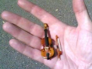 World's Smallest Violin Plays 'My Heart Bleeds For You'