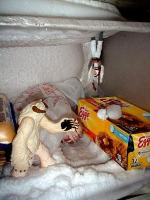 Star War Hoth Freezer Scene