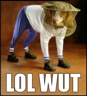 LoL Wut Dog