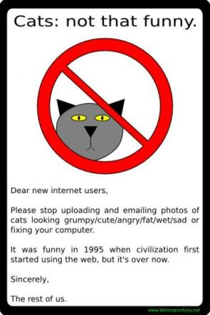 Cats: not that funny.