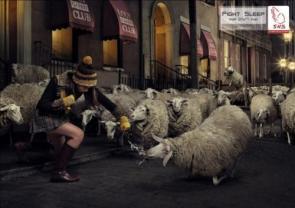 Fight Sheep