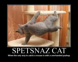 Spetsnaz Cat