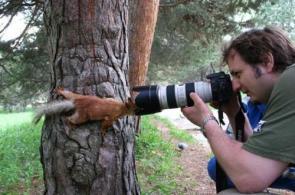 Squirrel Photographer