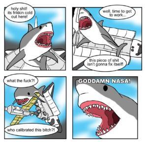 NASA Shark