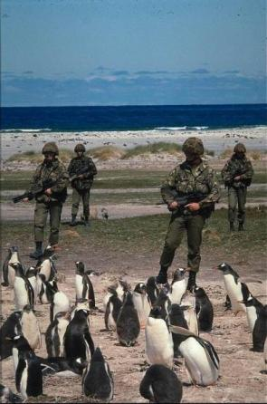 Military Penguin Guards