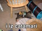 Catamari!