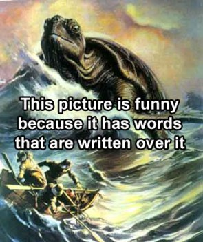 funny-because-of-words.jpg