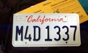 M4D l33T Plate