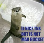 Not My Bucket.