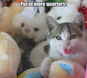 Mor Quarters.