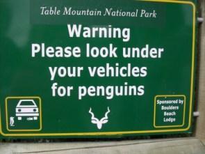 Penguin Warning