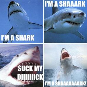 Singing Shark (Live Action)