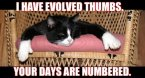 I have evolved thumbs.  Your days are numbered.