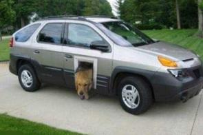 Car Doggy Door