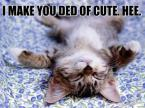 i make you ded of cute