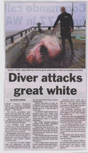 Diver attacks great white