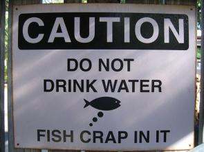 Do not drink water, fish crap in it