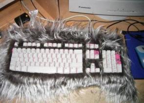 Furry Keyboard