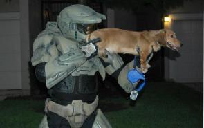 Halo Weapon Upgrade