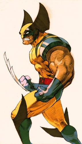 Big Eared Wolverine