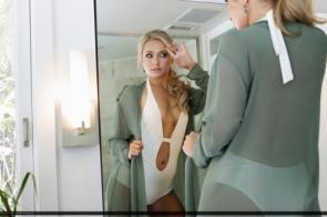 NSFW – Hayden Panettiere Mirror Image