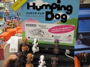 Humping Dog – USB