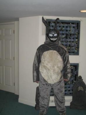 Stupid Rabbit Suit