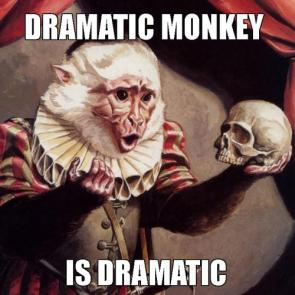 Dramatic Monkey is Dramatic