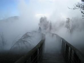 Misty Boardwalk
