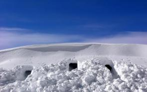 Snow Fort Entrances