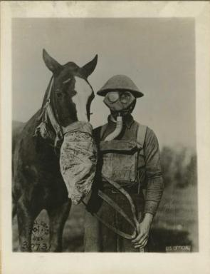 Solider and horse with gas masks